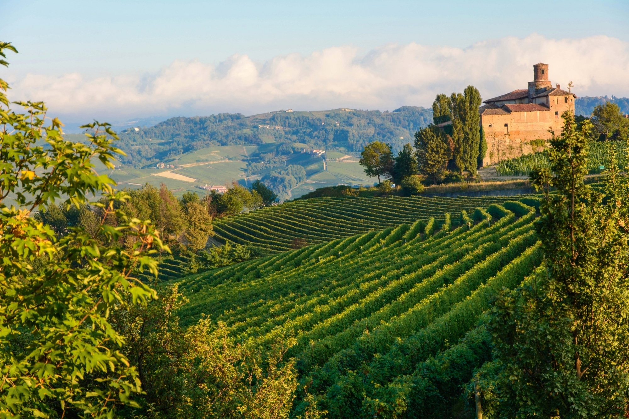 Piemont, Barolo
