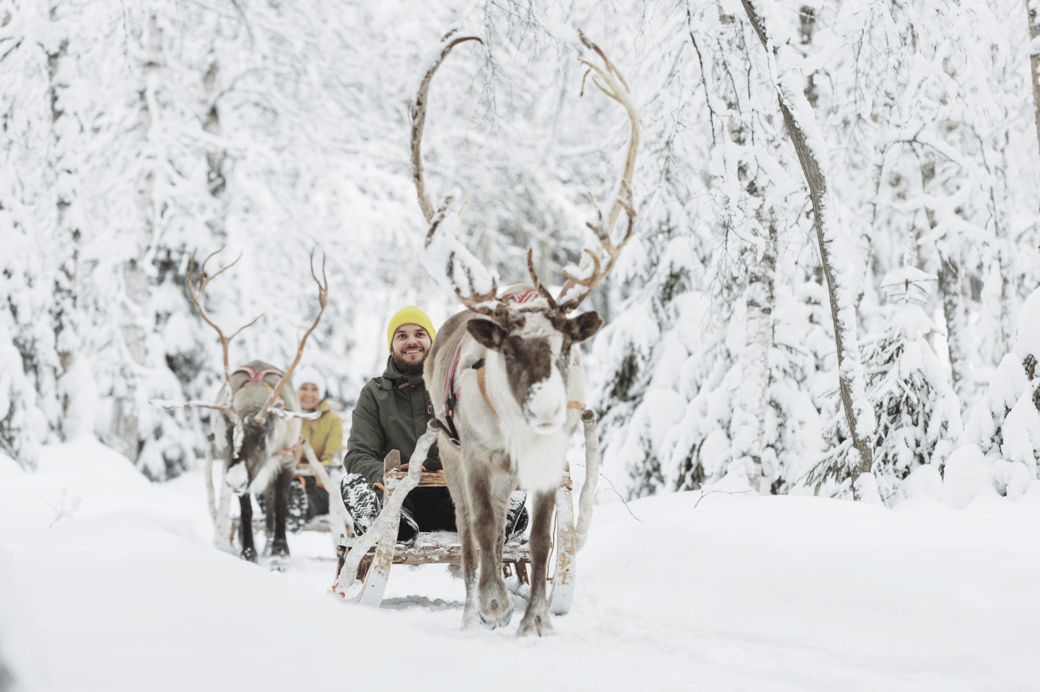 Rentierschlitten ©Juho Kuva