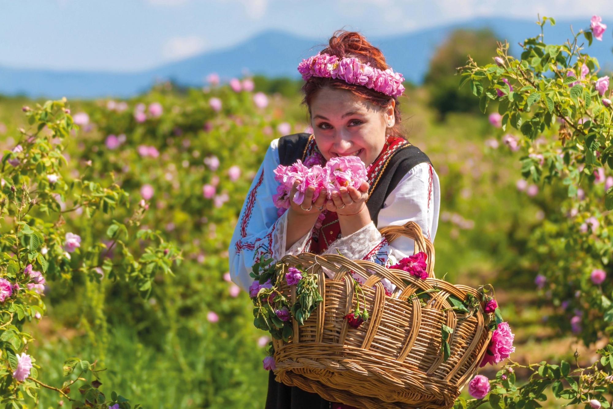 Bulgarien, Rosen