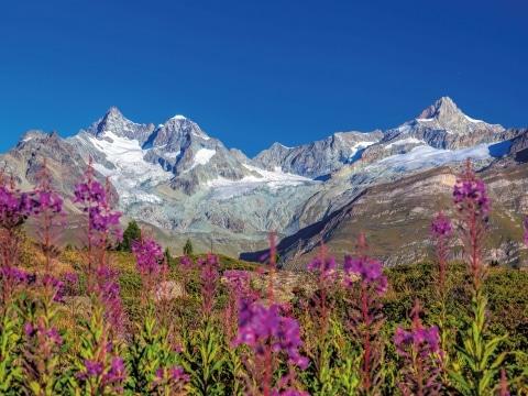 Wallis, Alpengletscher