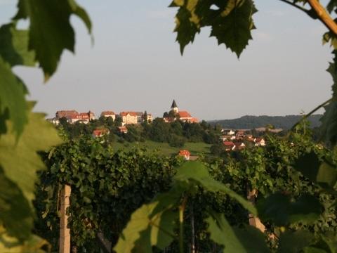 Blick von Schemming (c) Thermenland Steiermark