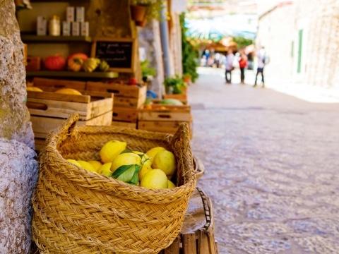 Gardasee Zitronen