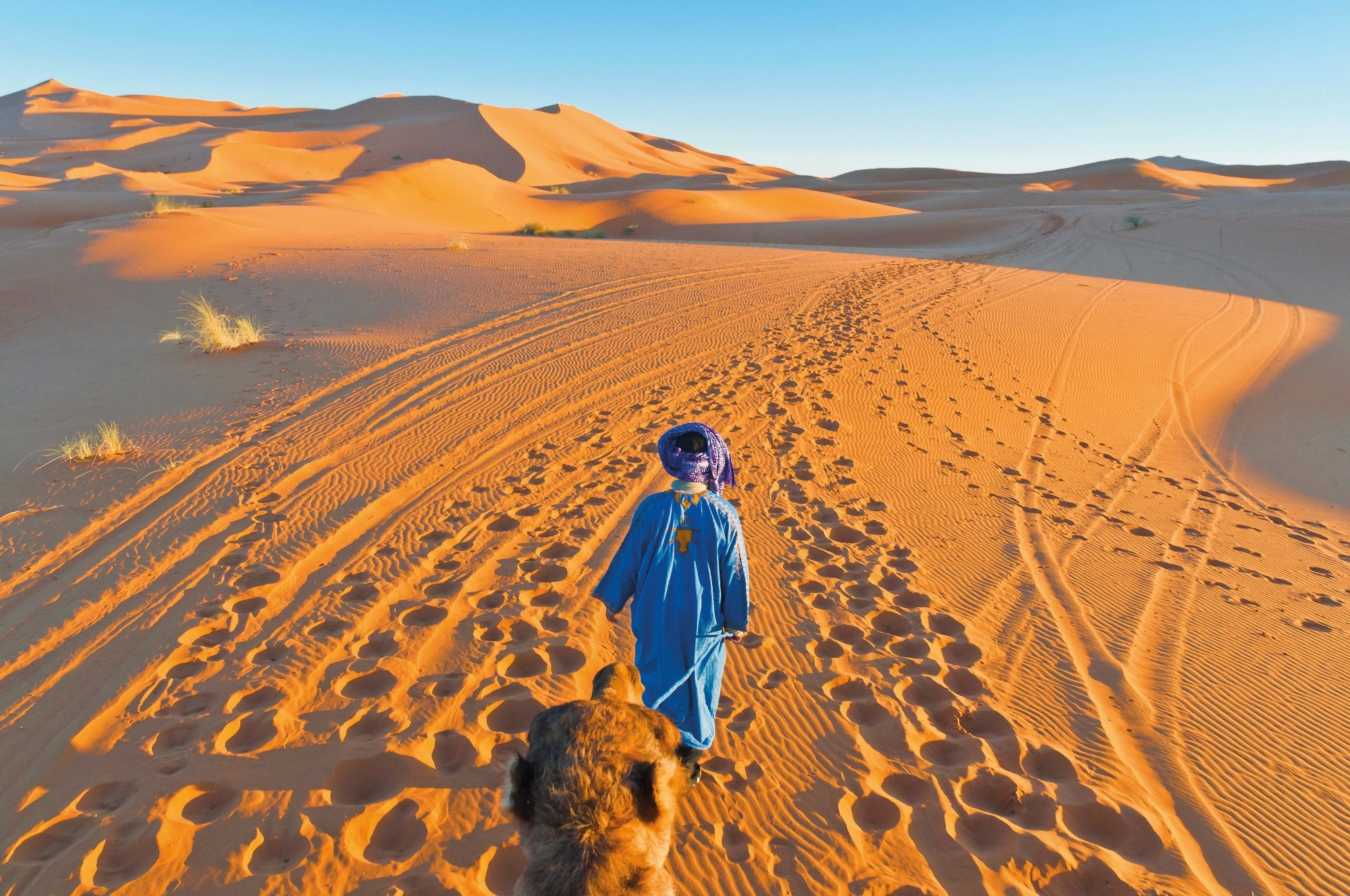Marokko, Berber mit Kamel, Erg Chebbi