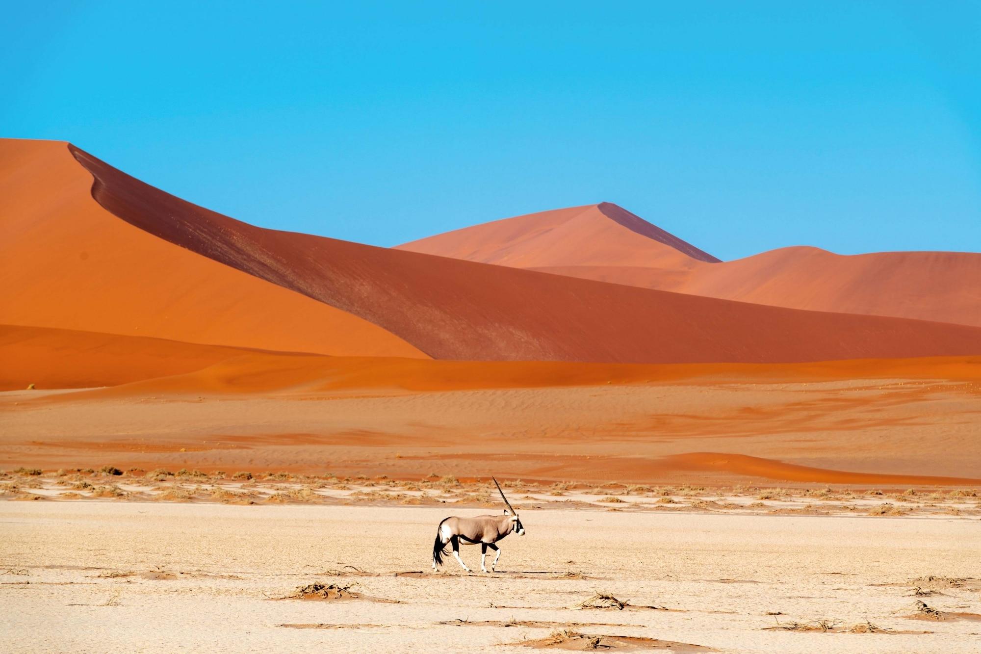 Namibia, Düne