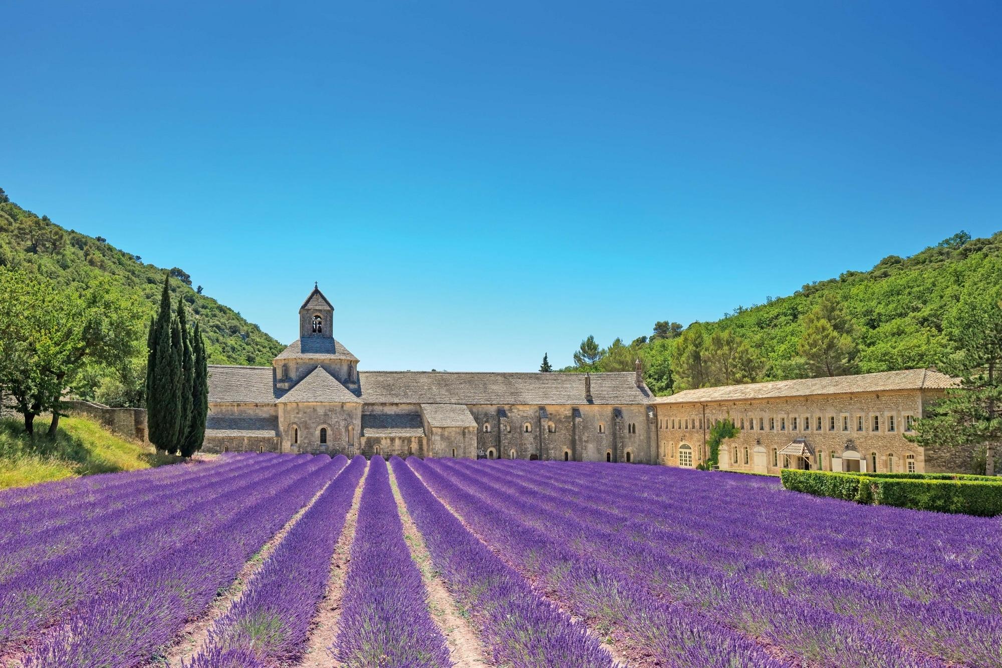 Kloster Senanque mit blühendem Lavendel_depositphotos