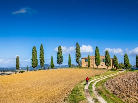 Radfahren in der Toskana © adobestock